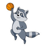 Cartoon raccoon player with ball Royalty Free Stock Photography