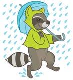 Cartoon raccoon running under umbrella Royalty Free Stock Photos