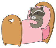 Cartoon raccoon sleeping in a comfortable bed Royalty Free Stock Photography