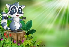 Cartoon of a raccoon standing on tree stump with green leaves and flowering plant stock illustration