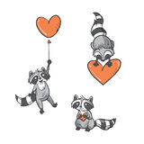 Cartoon  raccoons set. Cartoon cute  raccoons set by Valentine's Day. Vector image. Doodle style Stock Images