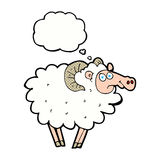 Cartoon ram with thought bubble Stock Photos