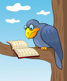 Cartoon raven and book. Cartoon raven sits on a tree and reads the book. Vecor illustration Stock Photos