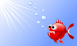 Cartoon red angry fish in water with bubbles and rays of light. Decorative image for printed materials and backgrounds Stock Photos