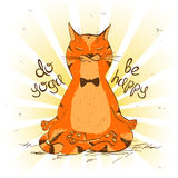 Cartoon red cat sitting on lotus position of yoga. Royalty Free Stock Photo