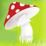 Cartoon red mushroom Stock Photo