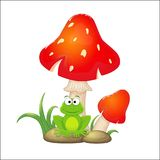 Cartoon red mushrooms with grass and stones and frogs sitting un. Der them. Vector illustration isolated on white background Royalty Free Stock Photo