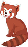 Cartoon red panda. Illustration of Cartoon red panda Royalty Free Stock Photo