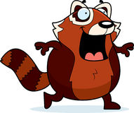 Cartoon Red Panda Walking Royalty Free Stock Image