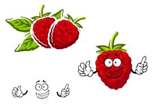 Cartoon red raspberry fruit character Stock Photo