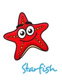 Cartoon red star fish with happy face. Close up cartooned red star fish with happy face  on white background Stock Photos