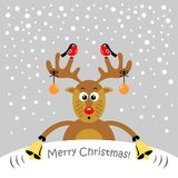 A cartoon reindeer. Vector illustration. Christmas card. A cartoon reindeer. Vector illustration stock illustration
