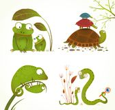 Cartoon Reptile Animals Parent with Baby Stock Photos