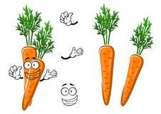 Cartoon ripe orange carrot vegetable Stock Images