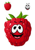 Cartoon ripe red raspberry with a cheeky grin Royalty Free Stock Photos
