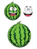 Cartoon ripe watermelon fruit Royalty Free Stock Image