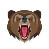 Cartoon roaring bear head on white background. Vector illustration for posters, T-shirt prints, postcards etc stock illustration