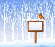 Cartoon robin bird on the blank sign with winter background Stock Photography