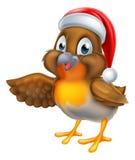 Cartoon Robin Bird in Santa Christmas Hat Royalty Free Stock Photo