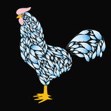 Cartoon Rooster with Blue feathers. On a black background . Cock the symbol of 2017 Stock Photo