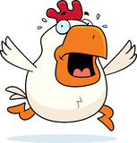 Cartoon Rooster Panic Stock Photo