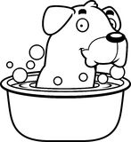 Cartoon Rottweiler Bath Royalty Free Stock Images