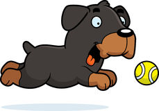 Cartoon Rottweiler Chasing Ball Royalty Free Stock Photo