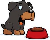 Cartoon Rottweiler Food Royalty Free Stock Photos