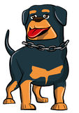 Cartoon Rottweiler with tongue sticking out Stock Photo
