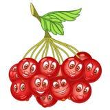 Cartoon Rowanberry character Stock Images