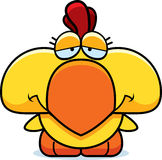 Cartoon Sad Chicken Royalty Free Stock Image