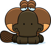 Cartoon Sad Platypus Royalty Free Stock Photo