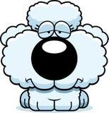 Cartoon Sad Poodle Royalty Free Stock Images