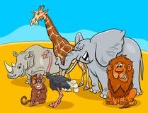 Cartoon safari animal characters group Stock Images