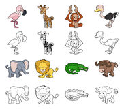 Cartoon Safari Animal Illustrations Stock Images