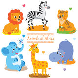 Cartoon safari animals pack. Cute vector set. Royalty Free Stock Image
