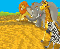 Cartoon safari - illustration for the children Royalty Free Stock Image