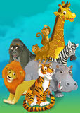 Cartoon safari - illustration for the children Stock Image