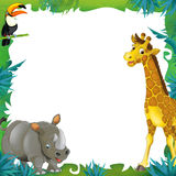 Cartoon safari - jungle - frame border template - illustration for the children. The happy and colorful illustration for the children Royalty Free Stock Image