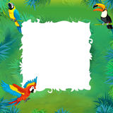 Cartoon safari - jungle - frame Royalty Free Stock Images