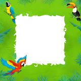 Cartoon safari - jungle - frame Stock Image