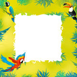 Cartoon safari - jungle - frame Royalty Free Stock Image