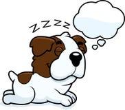 Cartoon Saint Bernard Dreaming Stock Photos