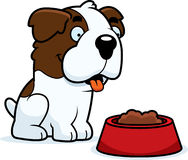 Cartoon Saint Bernard Food Royalty Free Stock Image