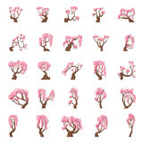 25 Cartoon sakura trees set Royalty Free Stock Photography