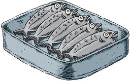 Cartoon Sardines Stock Images