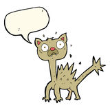 cartoon scared cat with speech bubble Royalty Free Stock Images