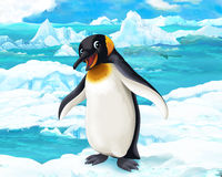Cartoon scene - arctic animals - penguins Royalty Free Stock Photo