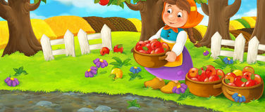 Cartoon scene with farm woman in garden during beautiful day - working - gathering apples Royalty Free Stock Image