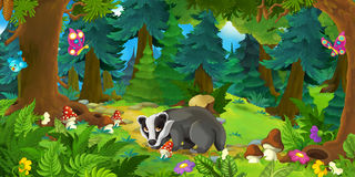 Cartoon scene with happy badger standing in the forest Stock Photos
